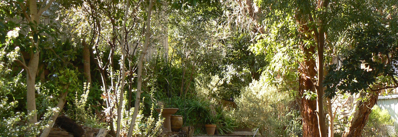 Gardenedited